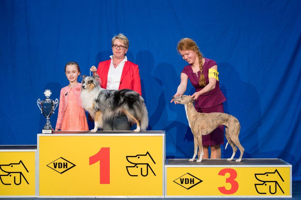 Internationaler Tagessieger Juniorhandling