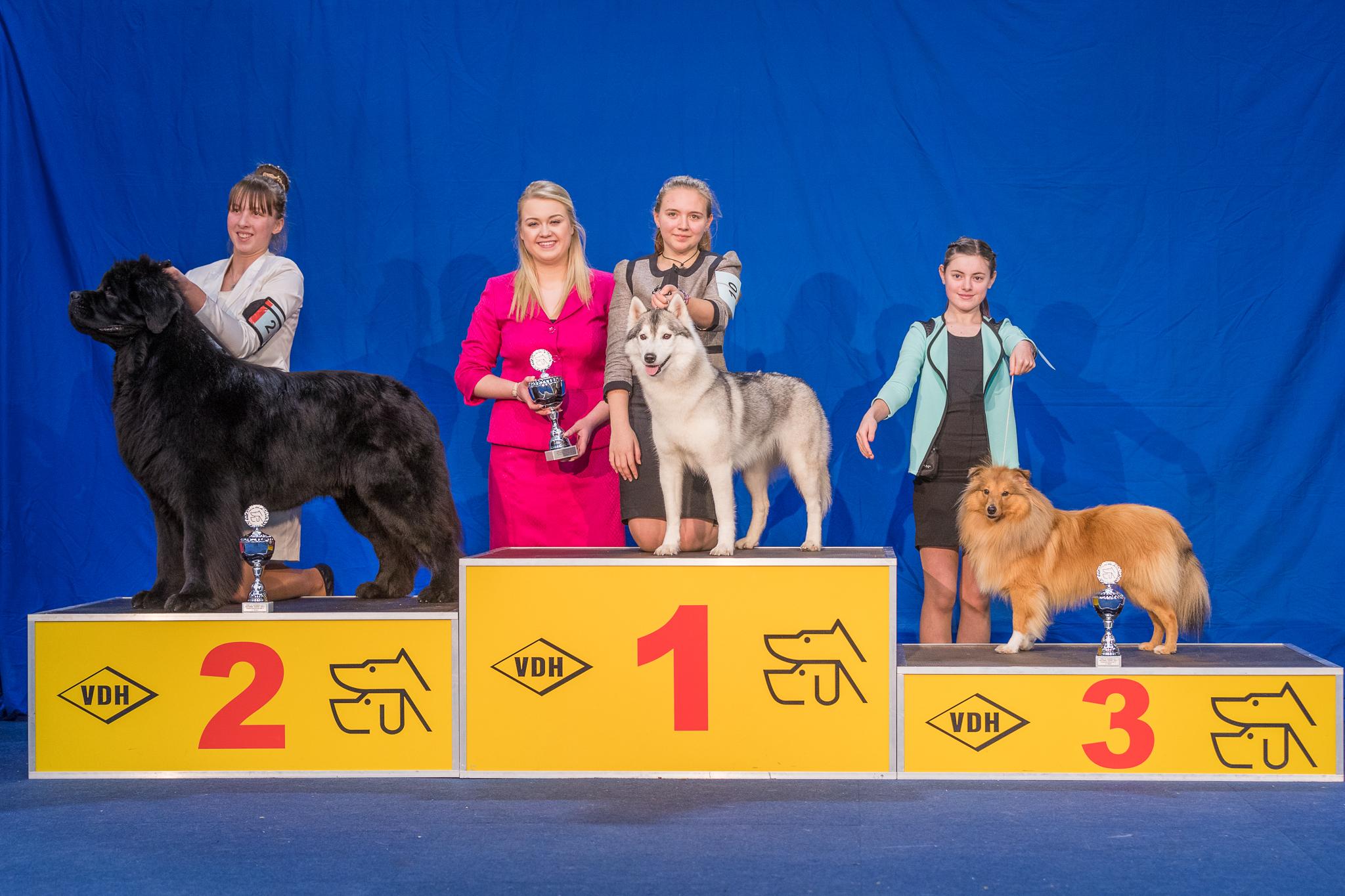 Nationaler Sieger Juniorhandling AK 2