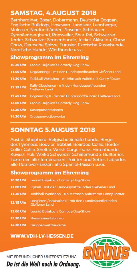 Flyer2018Gießen_2